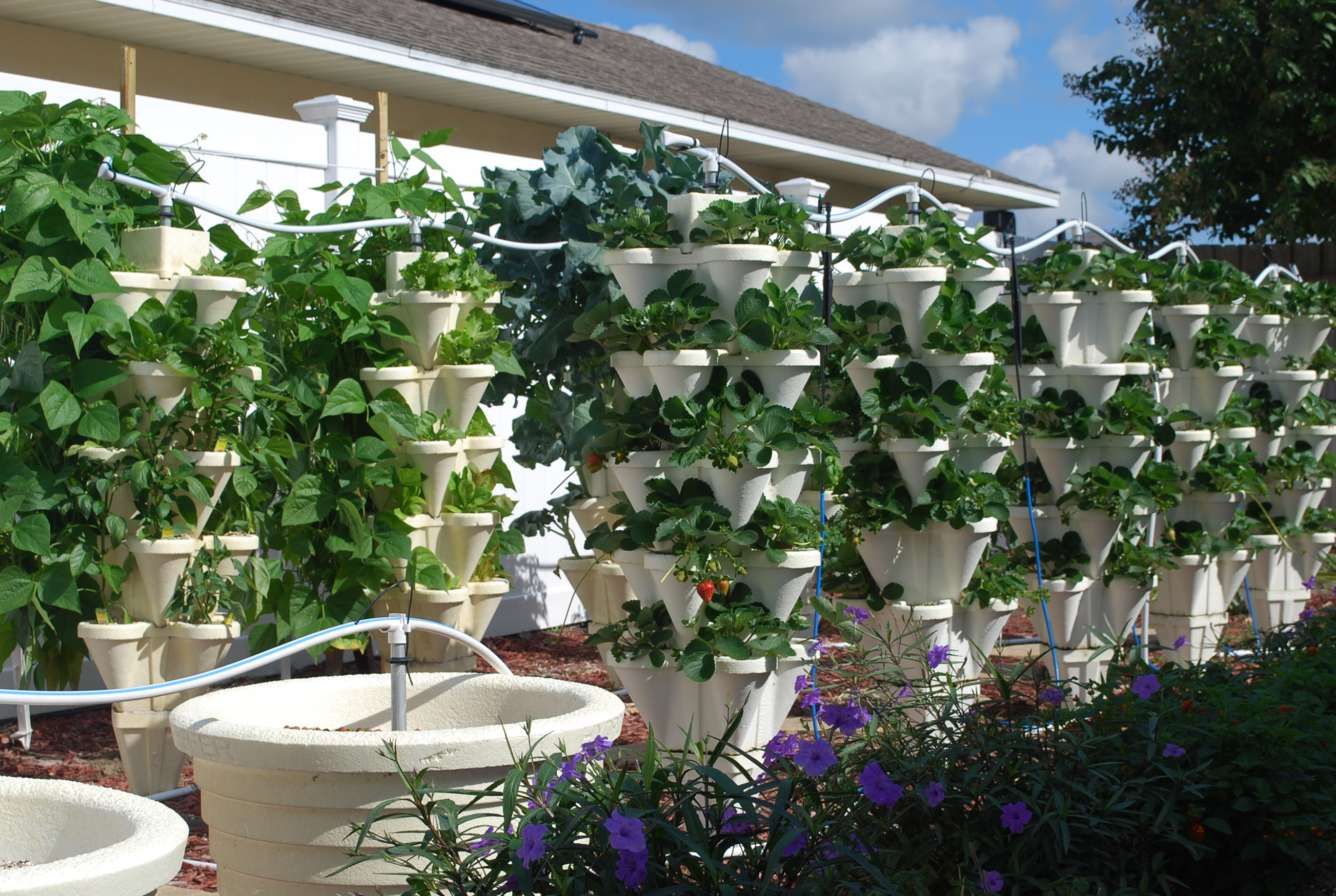 Ordinaire Hydroponic Home Garden. Have Backyard ...