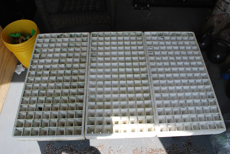 starter trays