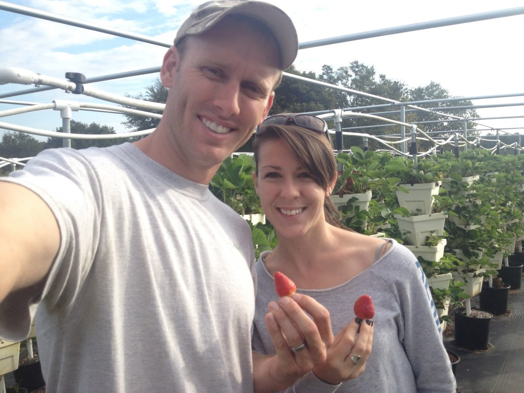 Enjoying the First Hydroponic Strawberries from the farm